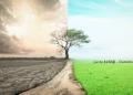çevre kirliliği nedir